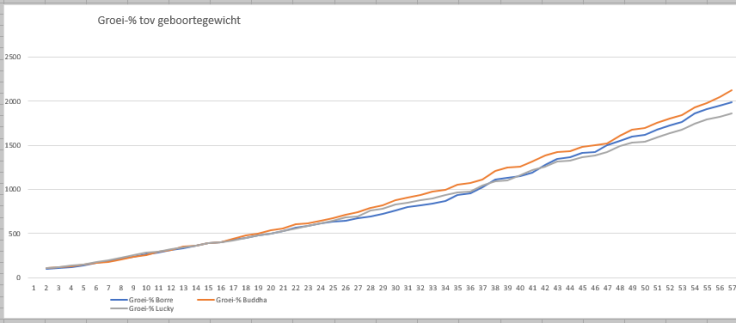 groeipercentage 19092017