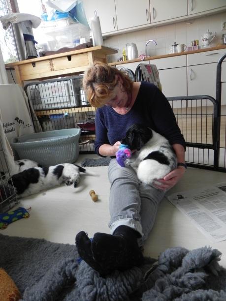 laatste keer puppy-knuffelen